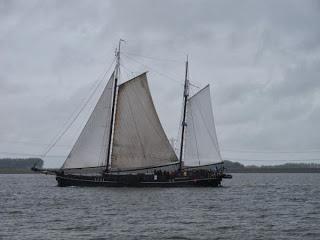North Netherlands cruise Part 9 – Urk to Kampen