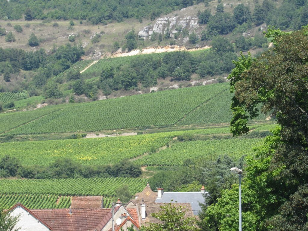 Santenay wine region