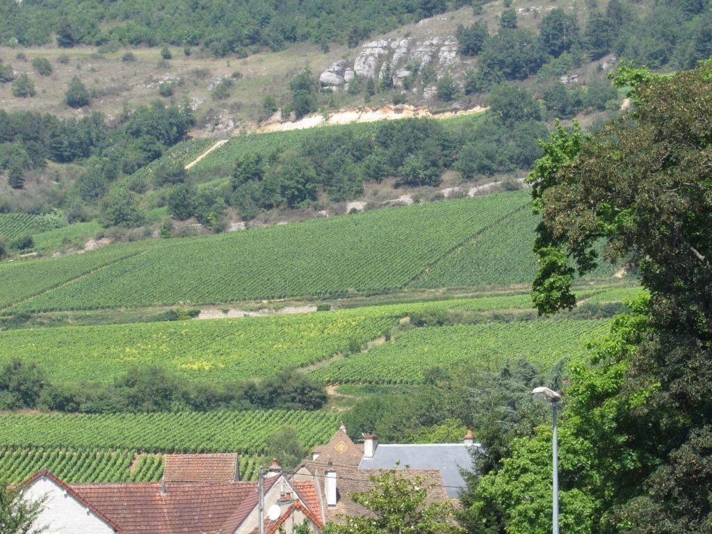 Santenay wine region